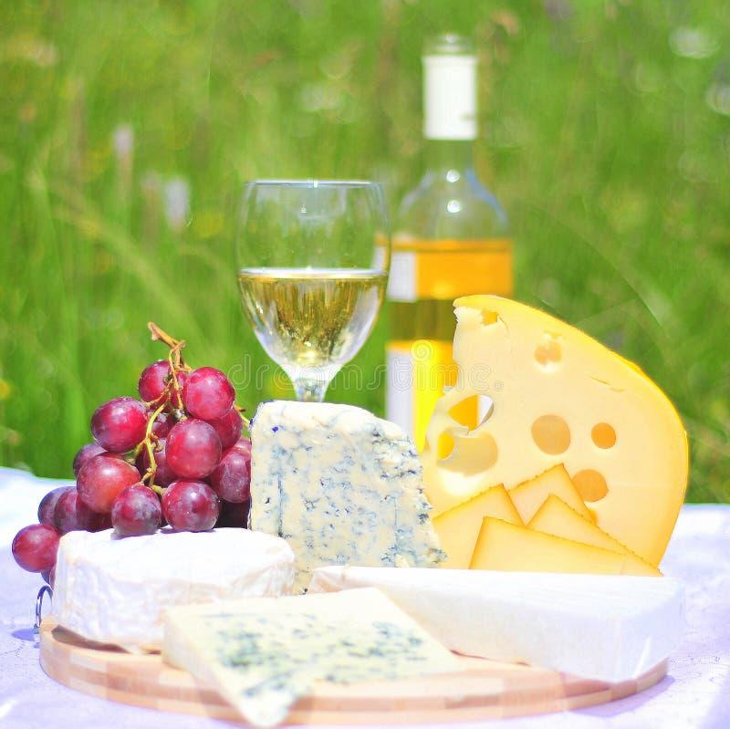 Placa do gourmet (queijo e vinho) imagem de stock royalty free