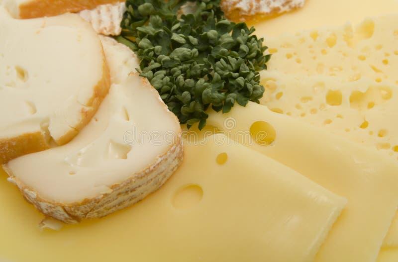 Placa do queijo, queijo como carnes frias cortadas imagem de stock royalty free