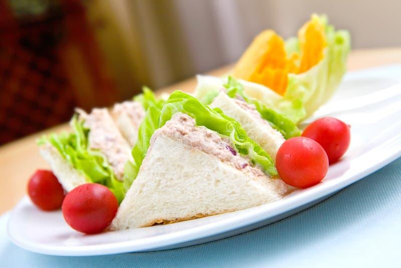 Placa do sanduíche do atum serida com crisp, fotos de stock royalty free