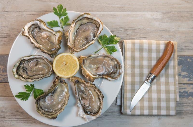 Placa e limão frescos do branco de ostras na mesa de madeira imagens de stock royalty free