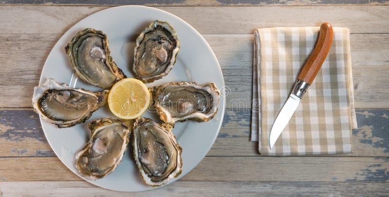 Placa e limão frescos do branco de ostras na mesa de madeira imagens de stock
