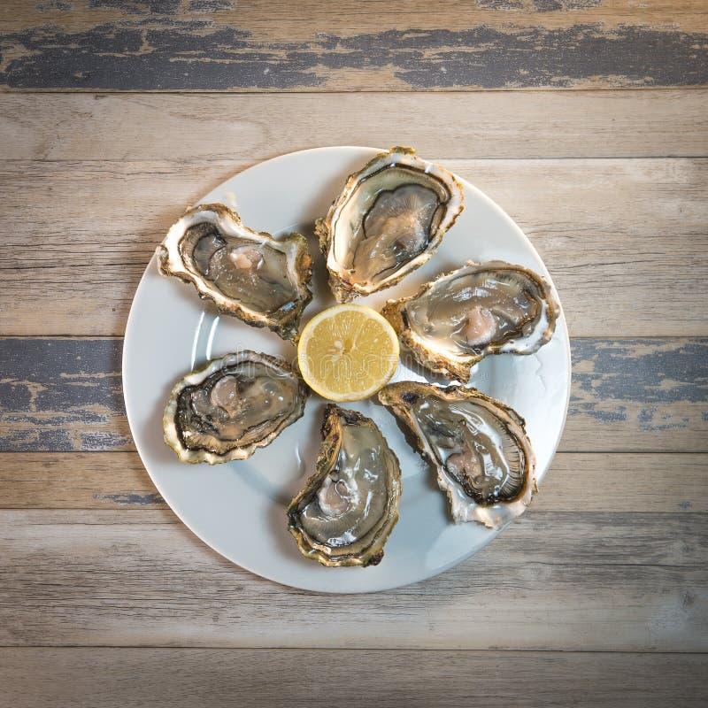 Placa e limão frescos do branco de ostras na mesa de madeira fotos de stock royalty free