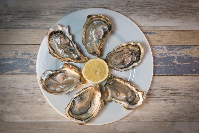 Placa e limão frescos do branco de ostras na mesa de madeira fotografia de stock royalty free