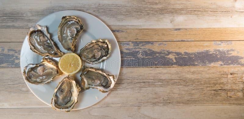 Placa e limão frescos do branco de ostras na mesa de madeira imagem de stock