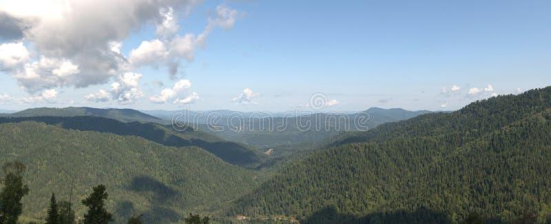 Placa panorâmica de floresta de coníferas sob um céu azul em nuvens brancas do topo da montanha imagens de stock