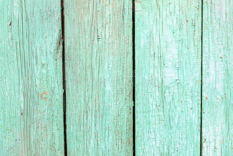 Placa verde idosa imagem de stock royalty free