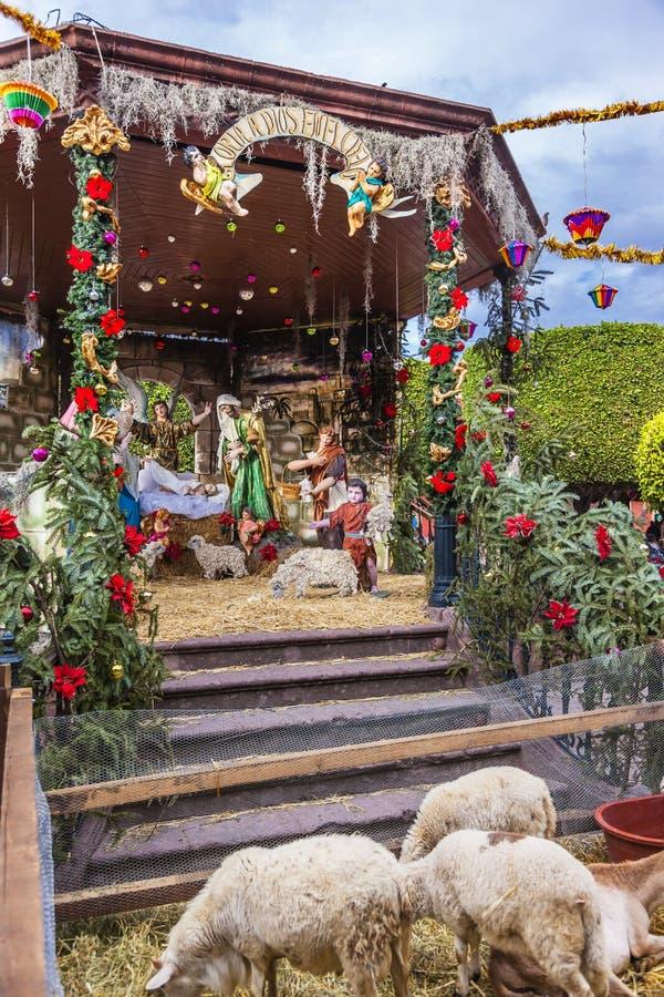 Place Chirstmas San Miguel de Allende Mexico de Jardin de moutons de nativité photos stock