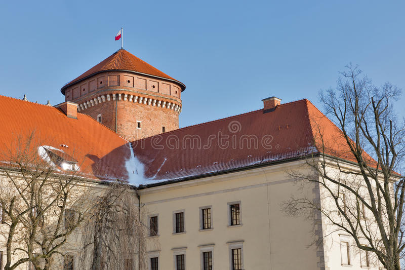 Place de yard de château de Wawel à Cracovie, Pologne images libres de droits