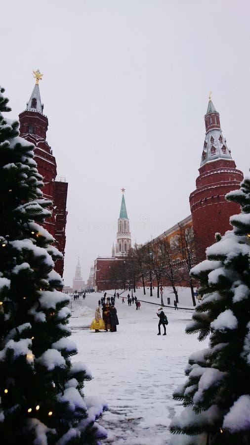 Place rouge par l'arbre de Noël s images stock
