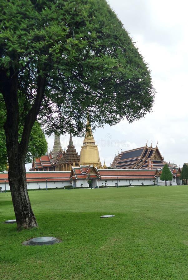 Place verte de pelouse dans le palais grand, Bangkok, Thaïlande photo libre de droits