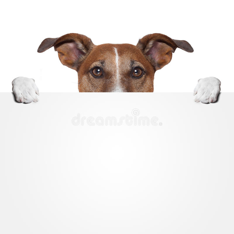 Placeholderfahnenhund lizenzfreie stockbilder