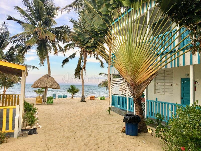 Placencia, Белиз - 26-ое мая 2018: Красивый песчаный пляж с a стоковая фотография rf