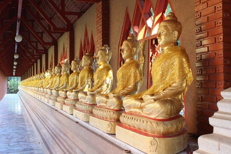 Placerade buddhas arkivbilder