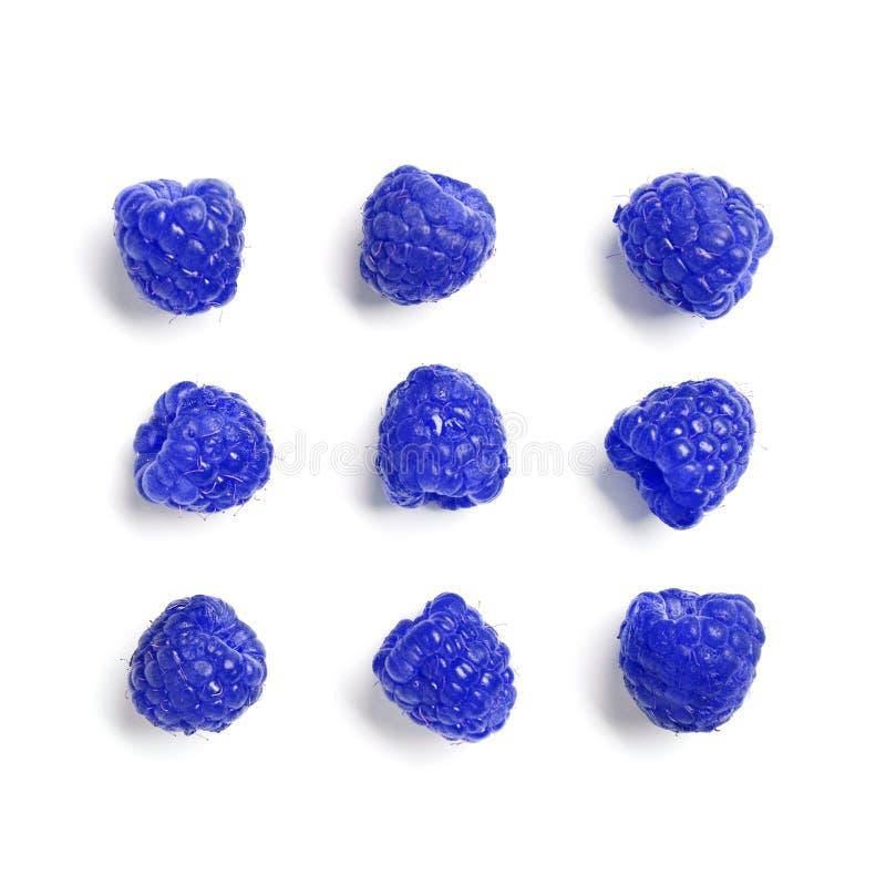 Placez avec des leucodermis bleus de Rubus de framboises photographie stock libre de droits
