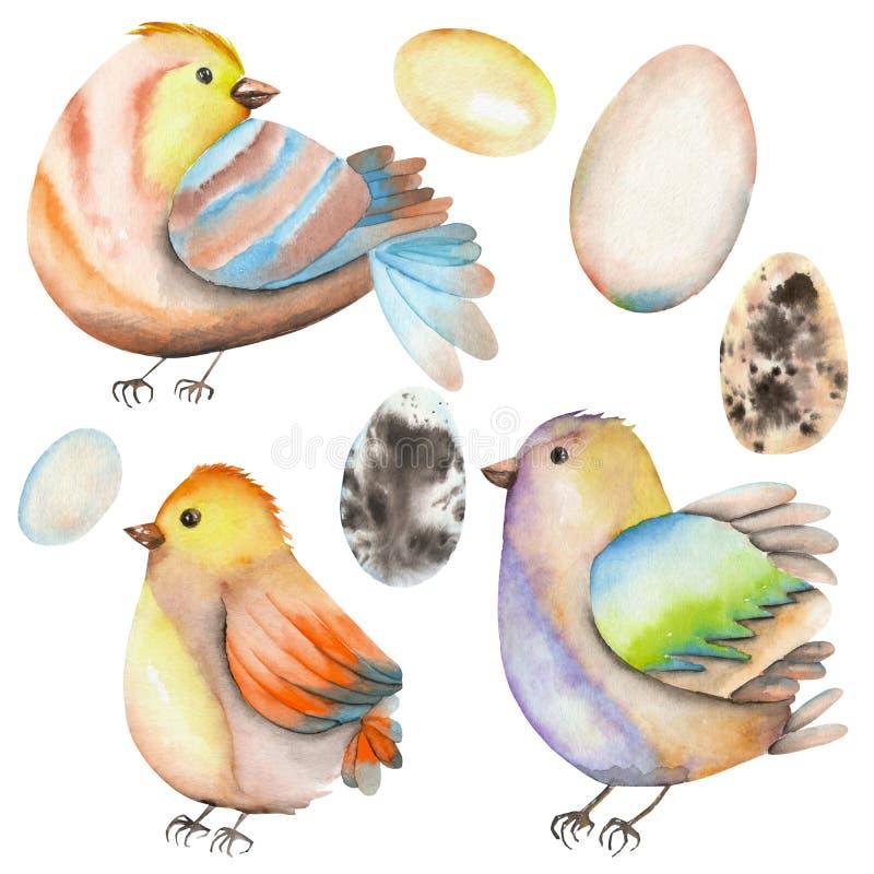 Download Placez, Collection Des Oiseaux D'aquarelle Et Oeufs Illustration Stock - Illustration du lumineux, paschal: 76079209