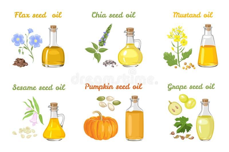 Placez d'huiles végétales dans des bouteilles en verre de différentes formes illustration libre de droits