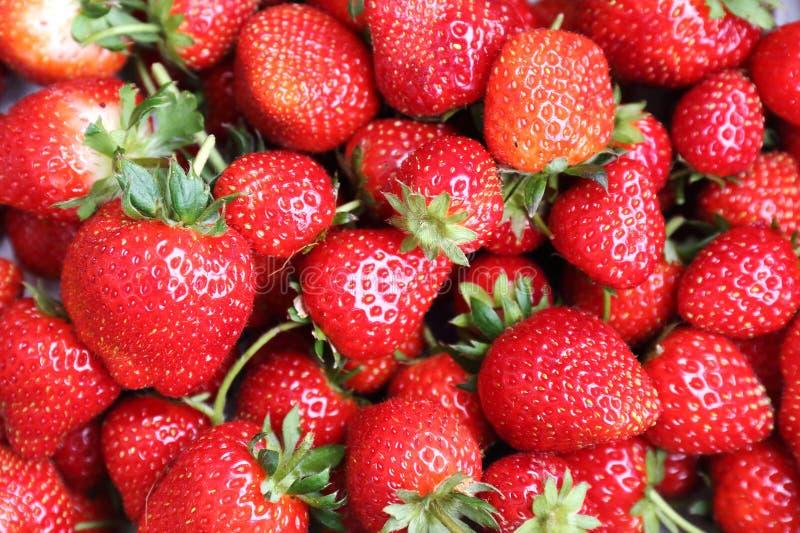 Placez dans une boîte de fraises image stock