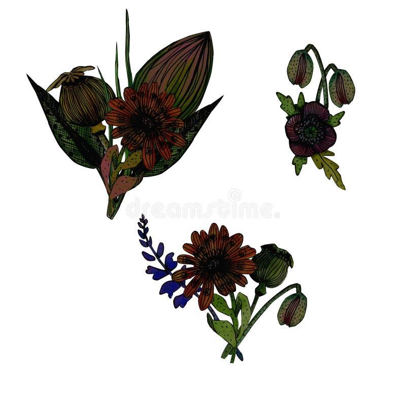Placez de l'illustration florale d'aquarelle illustration libre de droits