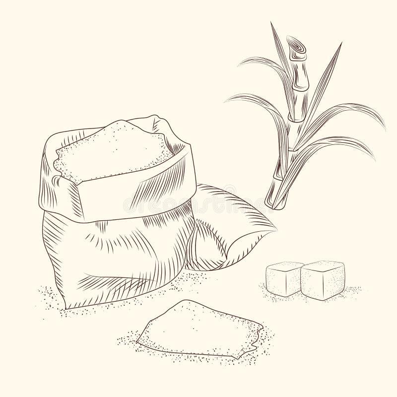 Placez de la canne à sucre La canne d'aspiration de main part du fond illustration de vecteur