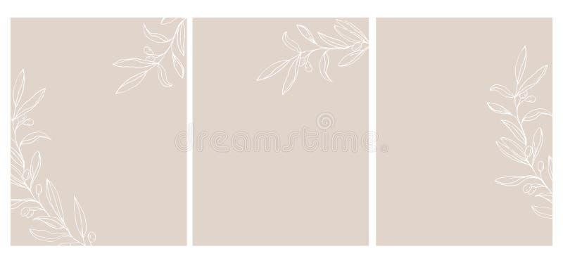 Placez de 3 Olive Twigs Vector Illustration Olive Branches Isolated esquissée blanche sur un fond brun clair illustration de vecteur