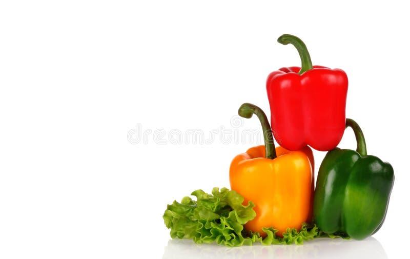 Placez de trois poivrons sur le fond blanc Jaune, rouge et vert photo libre de droits