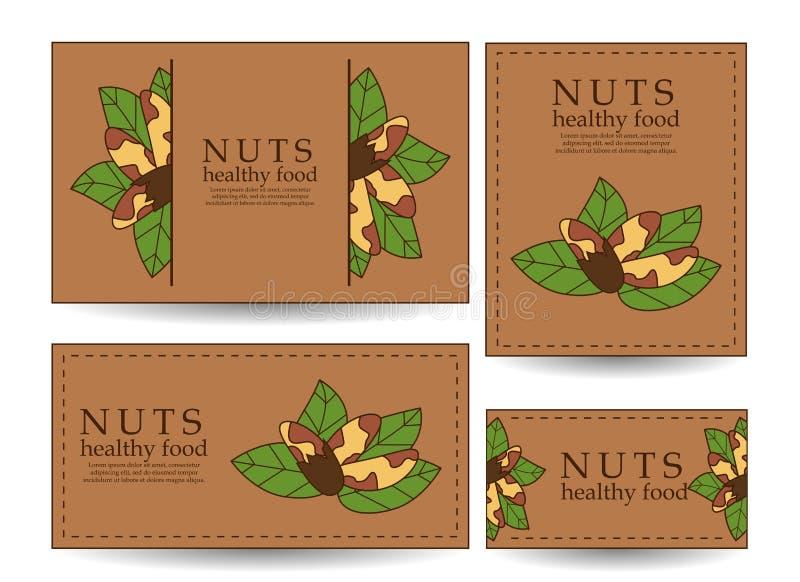 Placez des bannières et des cartes de vecteur avec des noix du brésil illustration stock