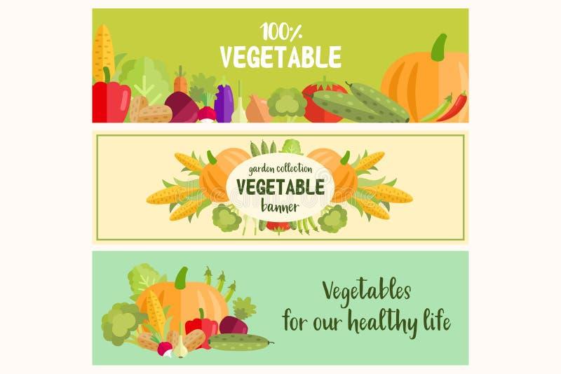 Placez des bannières plates de légumes de vecteur pendant la vie saine illustration libre de droits