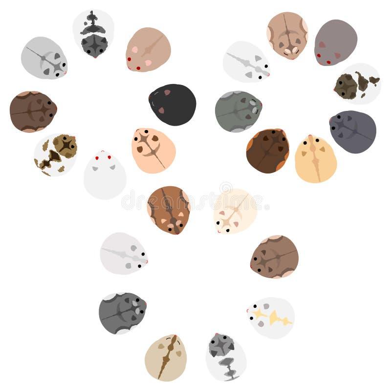 Placez des cadres de cercle des hamsters nains illustration de vecteur