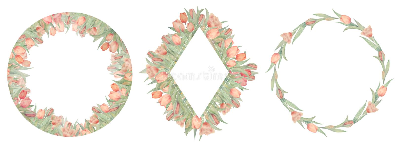 Placez des cadres de tulipes d'aquarelle Dessiné à la main Idéal pour le logo, épousant des invitations, cartes illustration libre de droits
