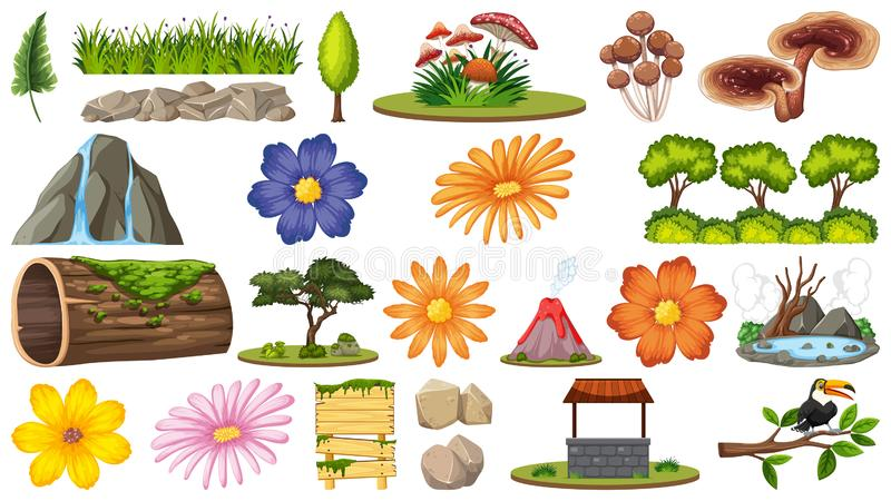 Placez des différentes fleurs et des choses de nature illustration libre de droits
