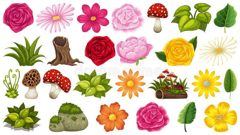 Placez des différents éléments de nature illustration stock