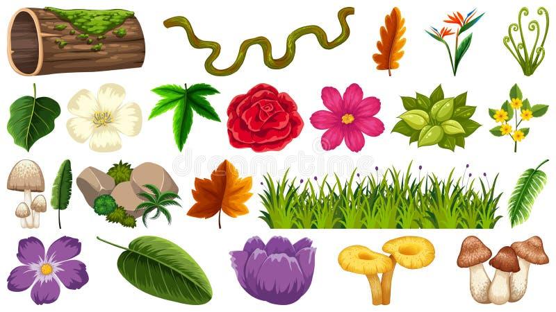 Placez des différents éléments de nature illustration de vecteur