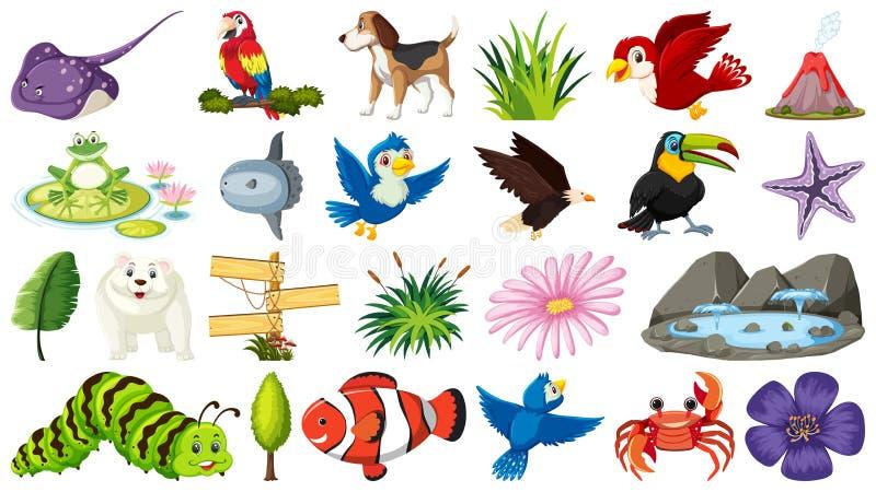 Placez des différents objets d'animal et de nature illustration stock
