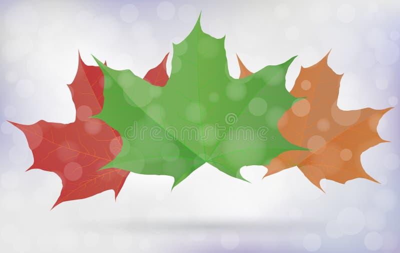 Placez des feuilles colorées d'érable avec le fond trouble de bokeh d'ombre Saison d'automne Illustration du vecteur eps10 illustration libre de droits