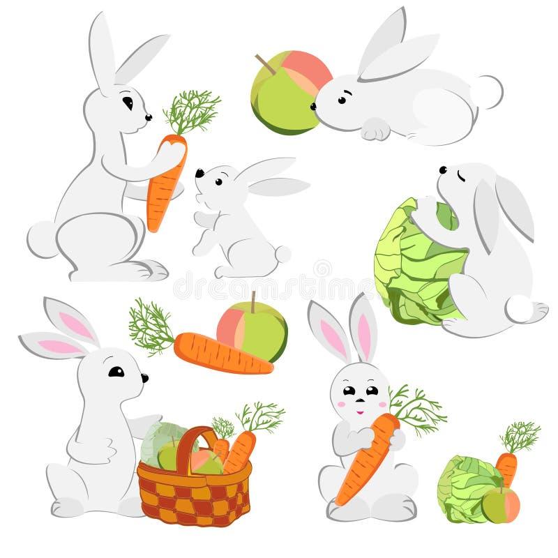 Placez des images des lapins mignons avec les carottes et le chou d'isolement sur le fond blanc illustration de vecteur
