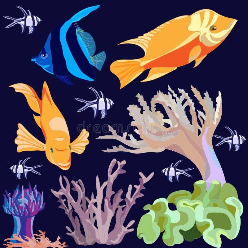 Placez des images des poissons exotiques lumineux, corail, actinium d'isolement sur le fond bleu-foncé illustration de vecteur