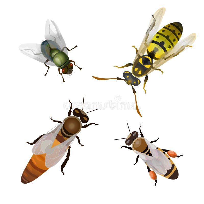 Placez des insectes volants illustration de vecteur