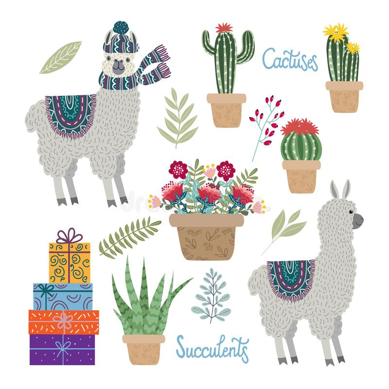 Placez des lamas mignons d'isolement avec des fleurs, des cactus et des succulents sur un fond blanc photographie stock