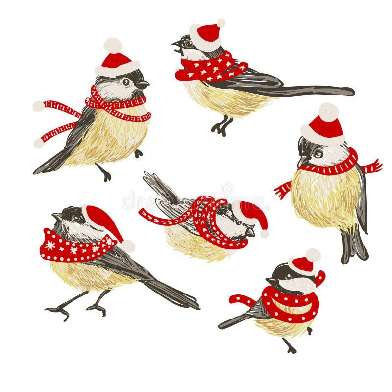 Placez des mésanges de vecteur et du conducteur réalistes drôles d'oiseau sur le fond blanc Image de Noël de vecteur Pour la déco illustration de vecteur