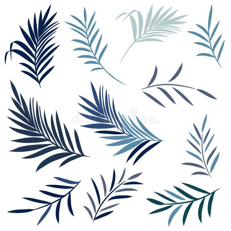Placez des palmettes élégantes de vecteur dans la couleur bleue, thème tropical d'été photo stock