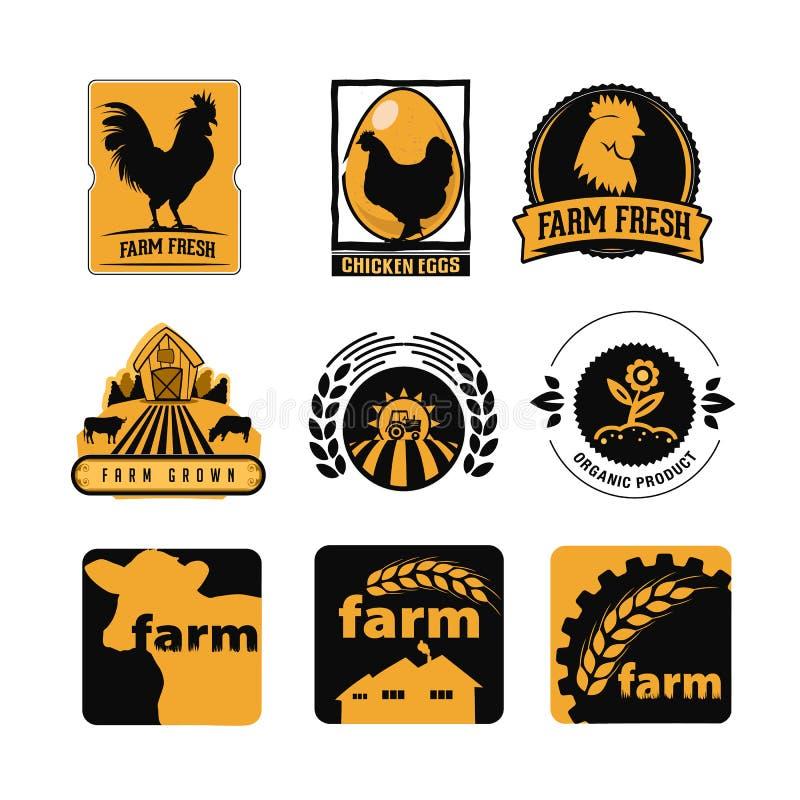 Placez du cru et des labels modernes de logo de ferme avec le poulet, les oeufs et les vaches illustration stock