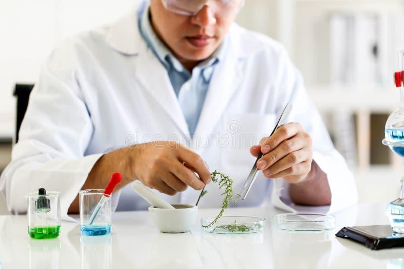 Placez du développement chimique et de la pharmacie de tube dans le concept de technologie de laboratoire, de biochimie et de rec photographie stock libre de droits