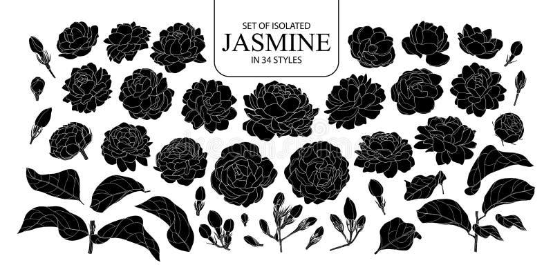 Placez du jasmin d'isolement de silhouette dans 34 styles images libres de droits