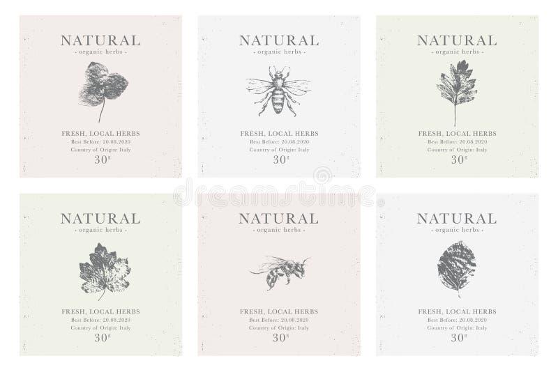 Placez du label personnalisable de cru des produits de fines herbes organiques naturels illustration de vecteur