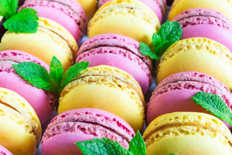 Placez du macaron coloré, décoré des feuilles en bon état photographie stock