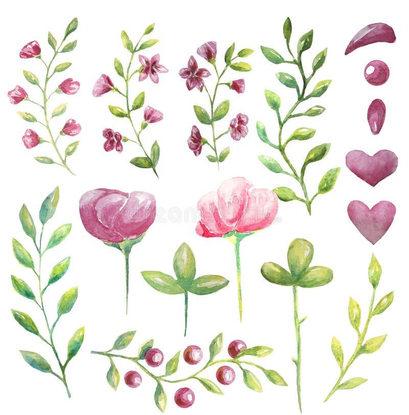 Placez du rose d'aquarelle les grandes et petites fleurs, branches avec les feuilles vertes pour vos décisions illustration libre de droits