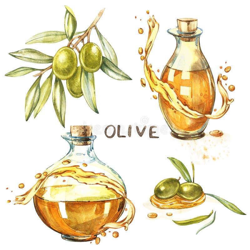 Placez la branche d'A des olives vertes mûres est juteux versées avec de l'huile Les baisses et éclabousse d'huile d'olive Aquare illustration libre de droits