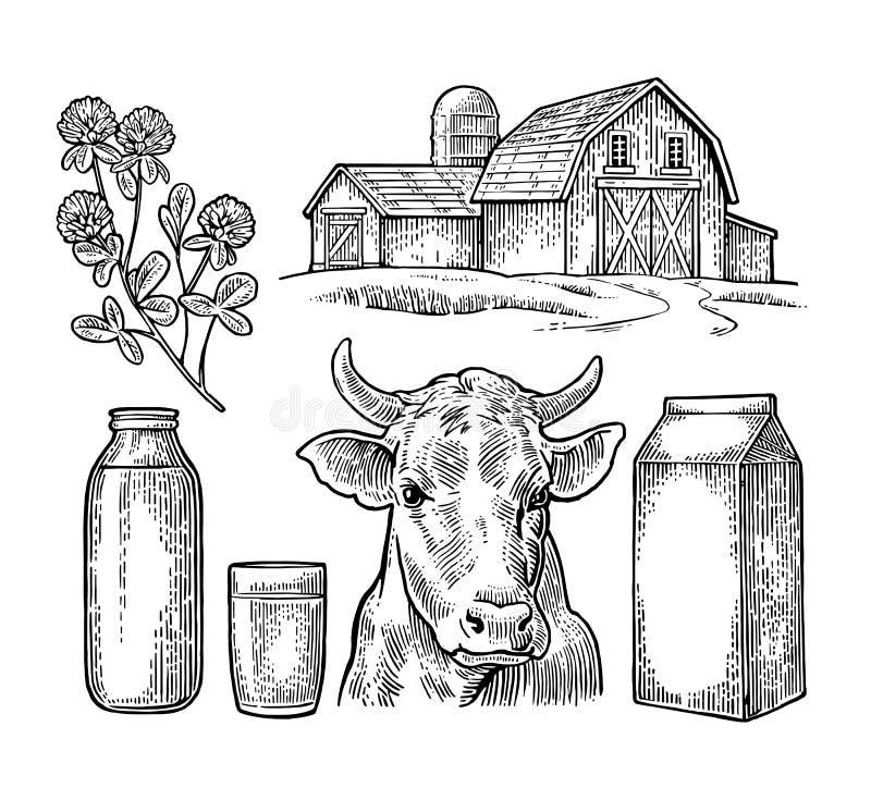Placez la ferme de lait Effrayez la tête, le trèfle, le paquet de carton de boîte, le verre et la bouteille illustration stock