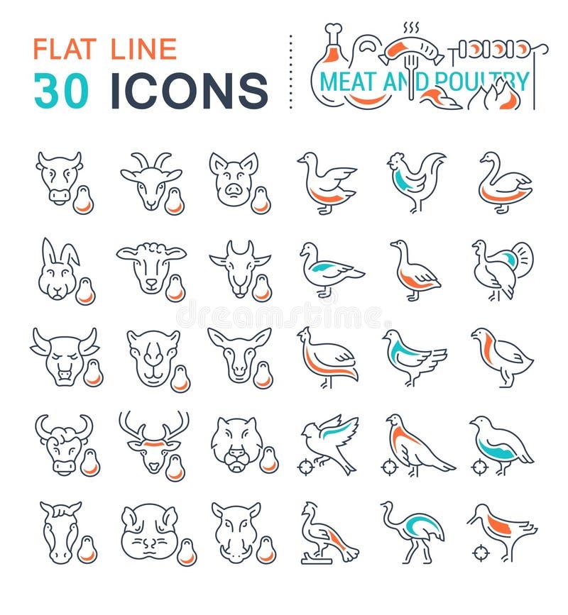 Placez la ligne icônes de vecteur de la viande et de la volaille illustration stock
