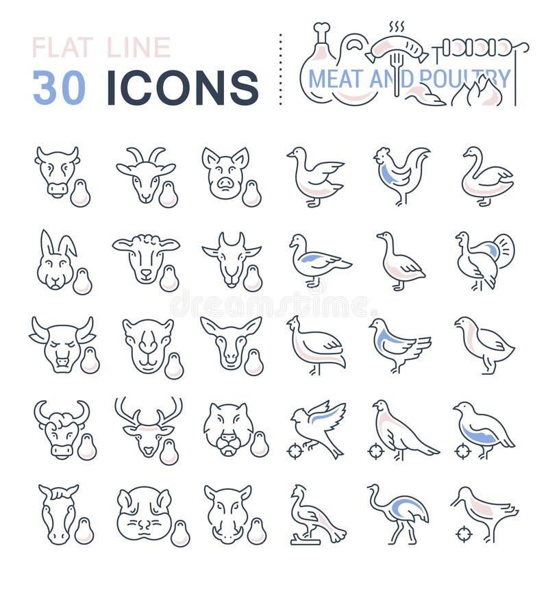 Placez la ligne icônes de vecteur de la viande et de la volaille illustration de vecteur